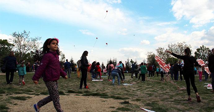 Edirne'de uçurtma şenliği