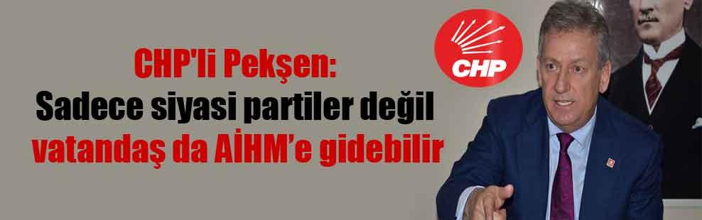 CHP'li Pekşen: Sadece siyasi partiler değil vatandaş da AİHM'e gidebilir
