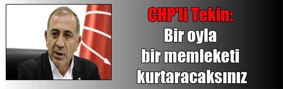 CHP'li Tekin: Bir oyla bir memleketi kurtaracaksınız