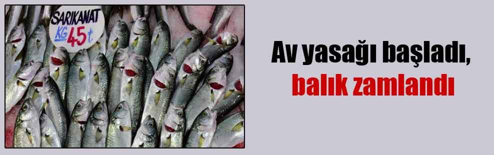 Av yasağı başladı, balık zamlandı