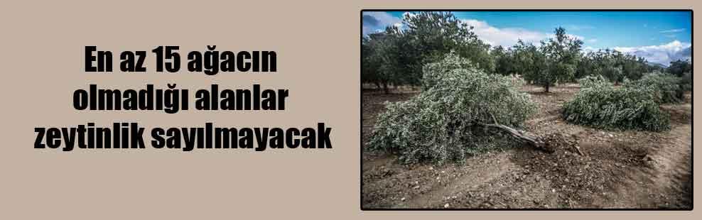 En az 15 ağacın olmadığı alanlar zeytinlik sayılmayacak