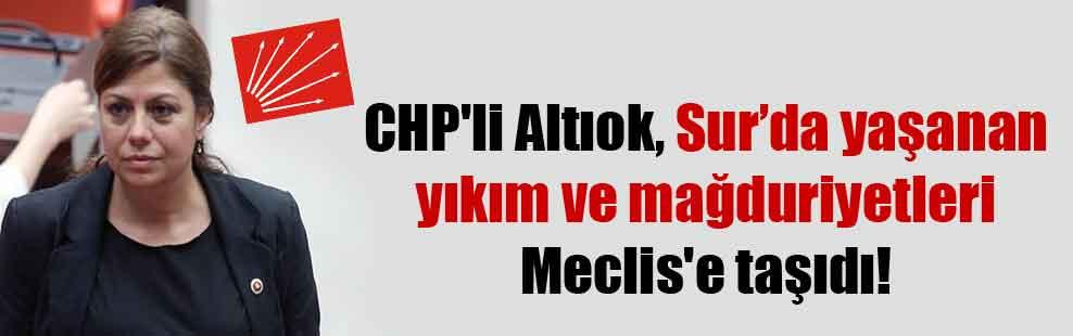 CHP'li Altıok, Sur'da yaşanan yıkım ve mağduriyetleri Meclis'e taşıdı!
