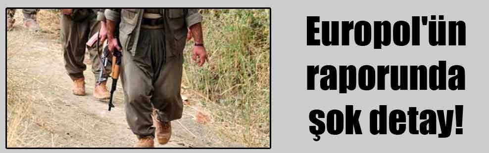 Europol'ün raporunda şok detay!