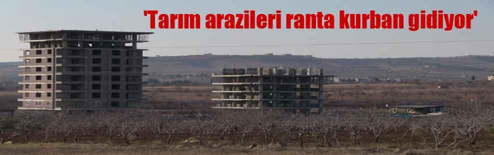 'Tarım arazileri ranta kurban gidiyor'
