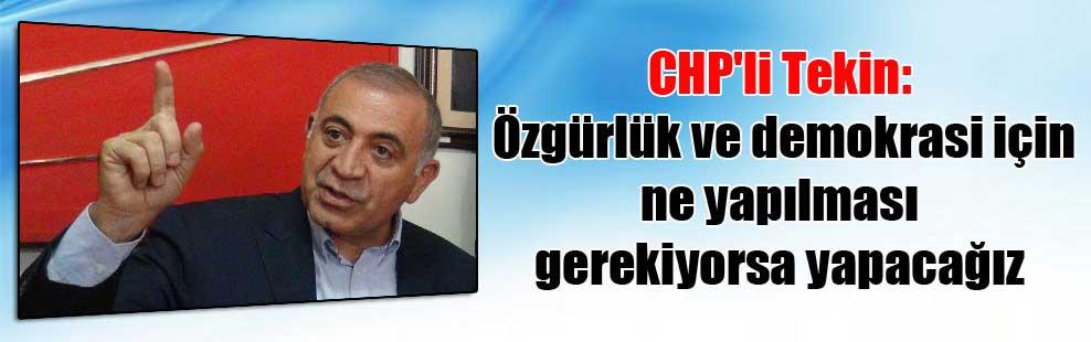 CHP'li Tekin: Özgürlük ve demokrasi için ne yapılması gerekiyorsa yapacağız