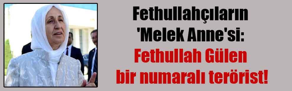 Fethullahçıların 'Melek Anne'si: Fethullah Gülen bir numaralı terörist!