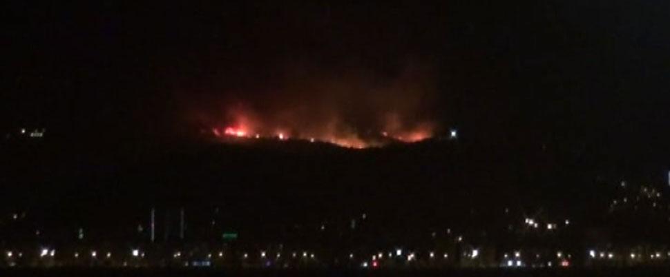 İzmir'de 5 hektarlık alan kül oldu!