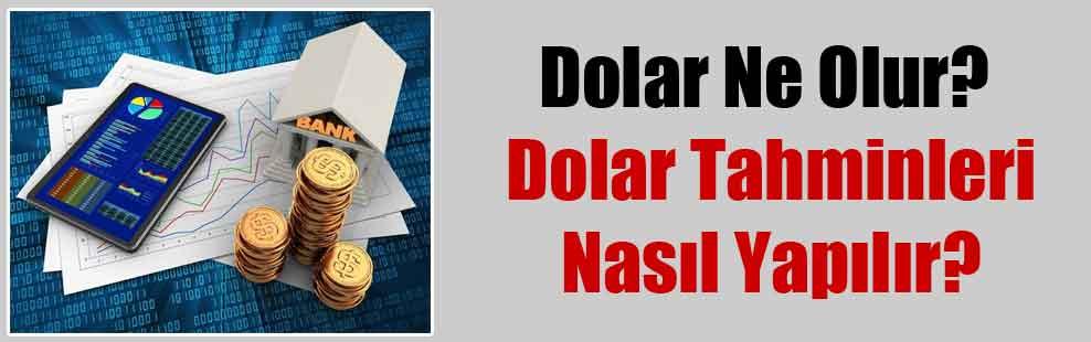 Dolar Ne Olur? Dolar Tahminleri Nasıl Yapılır?