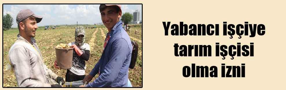 Yabancı işçiye tarım işçisi olma izni