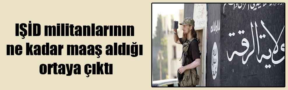 IŞİD militanlarının ne kadar maaş aldığı ortaya çıktı