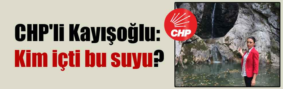 CHP'li Kayışoğlu: Kim içti bu suyu?