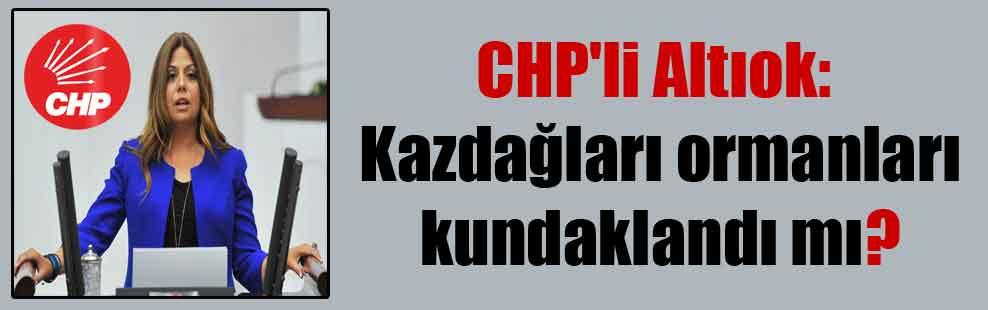CHP'li Altıok: Kazdağları ormanları kundaklandı mı?