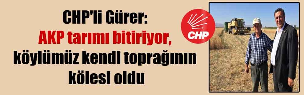 CHP'li Gürer: AKP tarımı bitiriyor, köylümüz kendi toprağının kölesi oldu