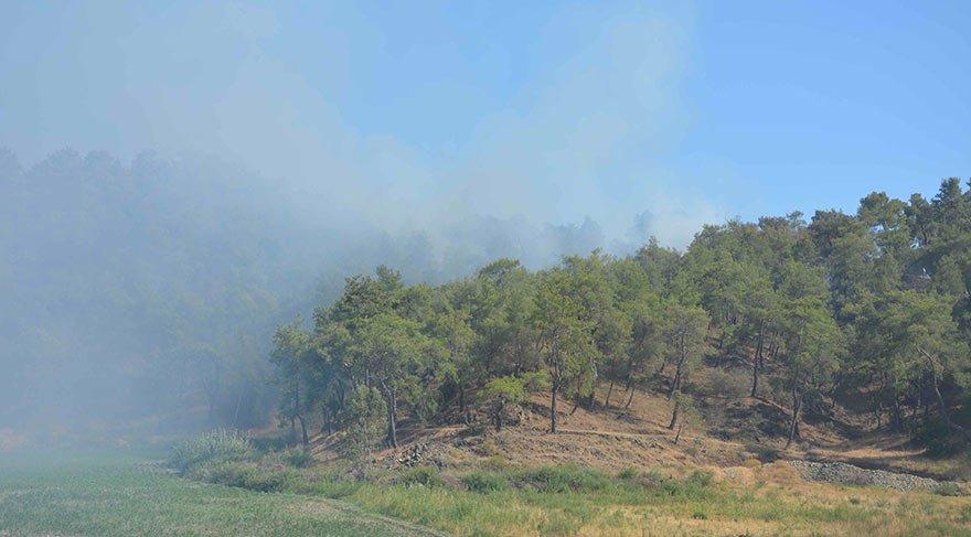 Köyceğiz ormanları yanıyor