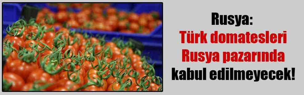 Rusya: Türk domatesleri Rusya pazarında kabul edilmeyecek!