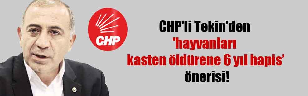CHP'li Tekin'den 'hayvanları kasten öldürene 6 yıl hapis' önerisi!