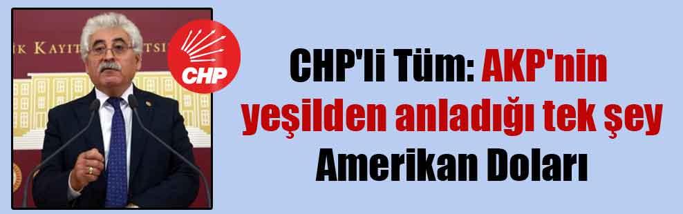 CHP'li Tüm: AKP'nin yeşilden anladığı tek şey Amerikan Doları
