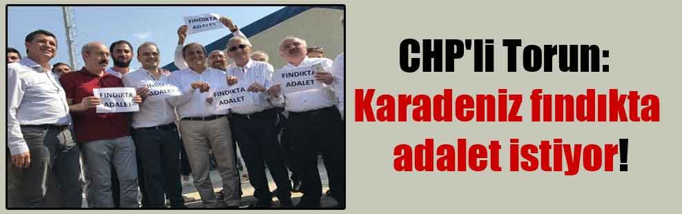 CHP'li Torun: Karadeniz fındıkta adalet istiyor!