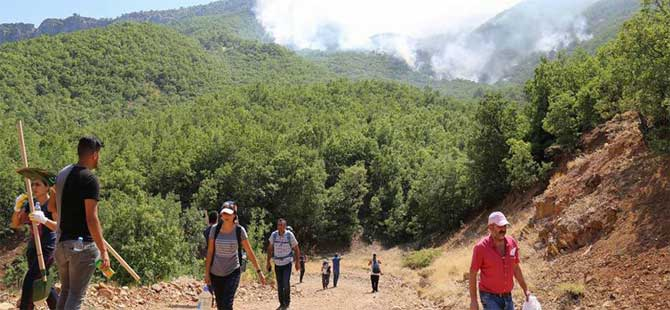 Tunceli'de orman yangınları