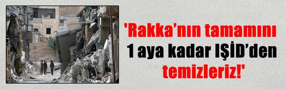 'Rakka'nın tamamını 1 aya kadar IŞİD'den temizleriz!'