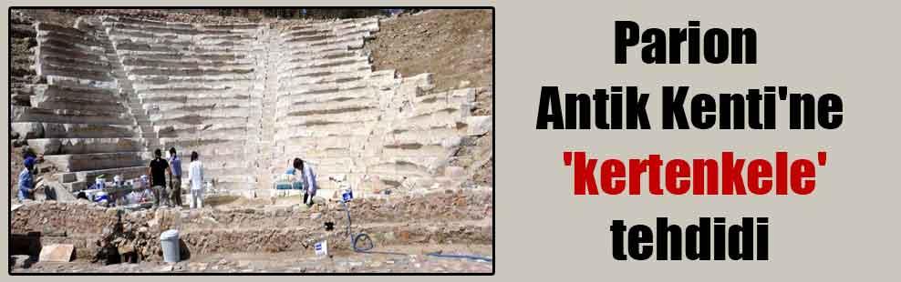 Parion Antik Kenti'ne 'kertenkele' tehdidi