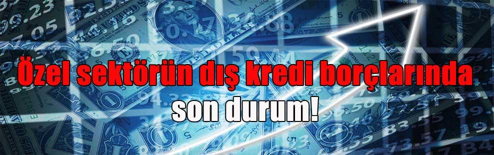 Özel sektörün dış kredi borçlarında son durum!