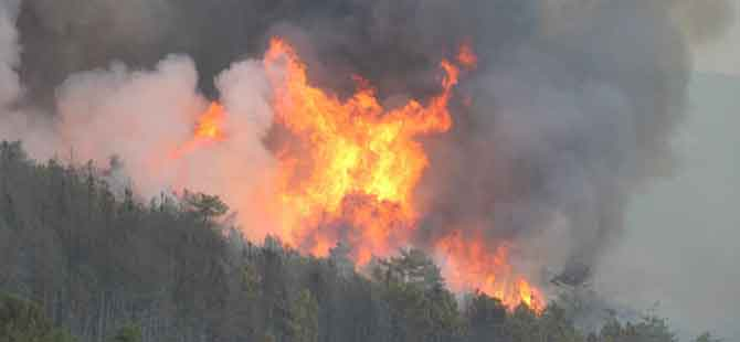 Kütahya'daki yangın 100 hektarlık alana yayıldı!