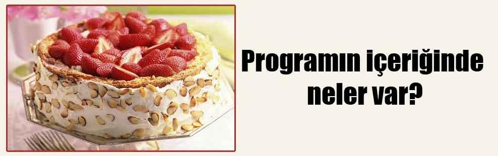 Programın içeriğinde neler var?