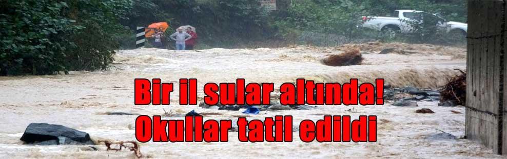 Bir il sular altında! Okullar tatil edildi