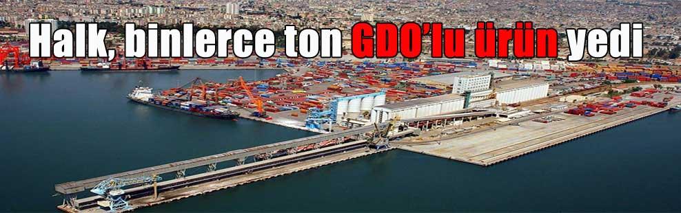 Halk, binlerce ton GDO'lu ürün yedi
