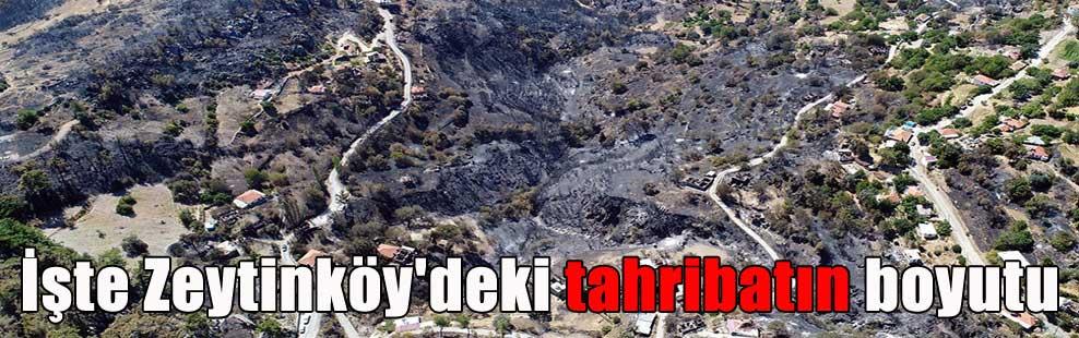 İşte Zeytinköy'deki tahribatın boyutu