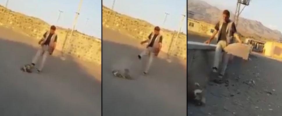 Ağrı'da yavru köpeğe yapılan işkencenin görüntüleri ortaya çıktı!
