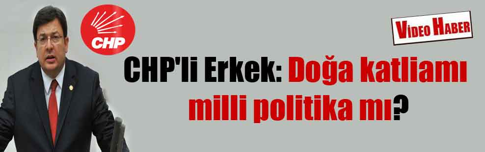 CHP'li Erkek: Doğa katliamı milli politika mı?