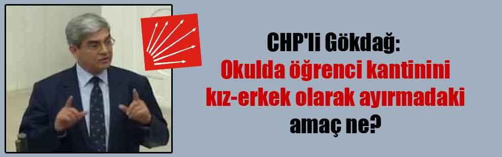 CHP'li Gökdağ: Okulda öğrenci kantinini kız-erkek olarak ayırmadaki amaç ne?