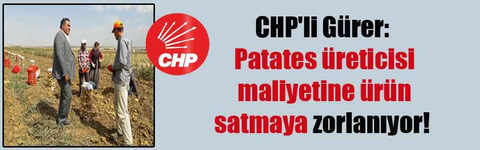 CHP'li Gürer: Patates üreticisi maliyetine ürün satmaya zorlanıyor!