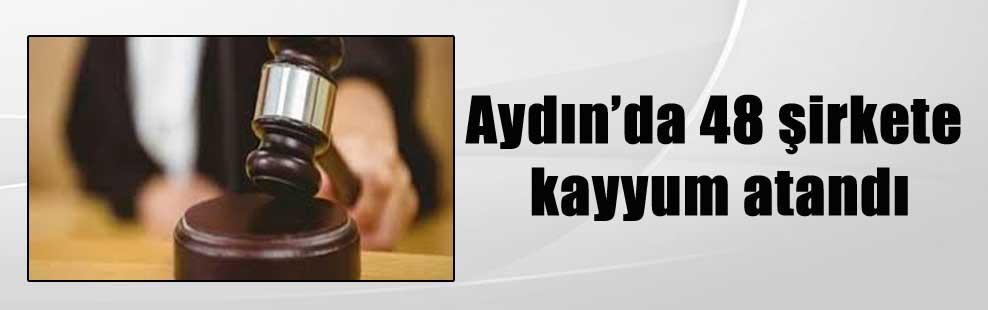 Aydın'da 48 şirkete kayyum atandı