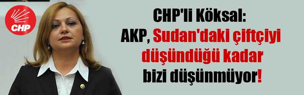 CHP'li Köksal: AKP, Sudan'daki çiftçiyi düşündüğü kadar bizi düşünmüyor!