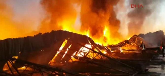 Türkiye alevlerle boğuşuyor: 21 ildeki 63 yangından 43'ü kontrol altında
