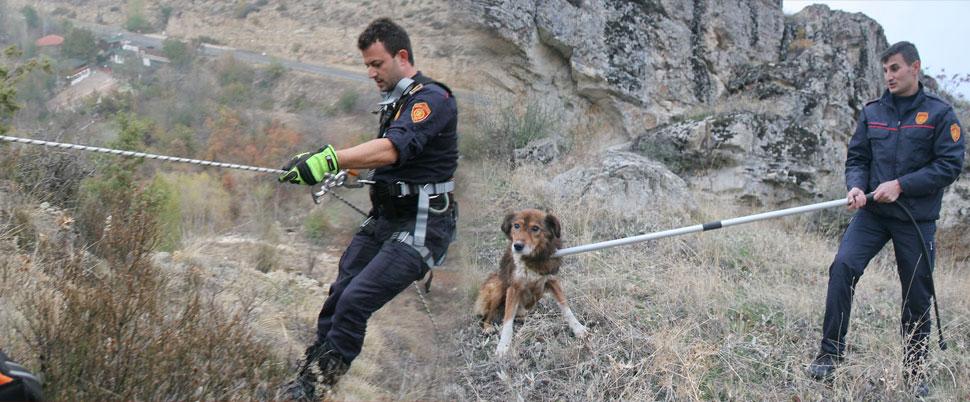 5 gündür mahsur kalan köpek böyle kurtarıldı