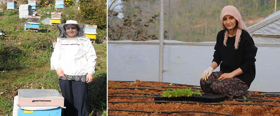 Giresun'da kadın çiftçiler aldıkları hibelerle üretime başladı