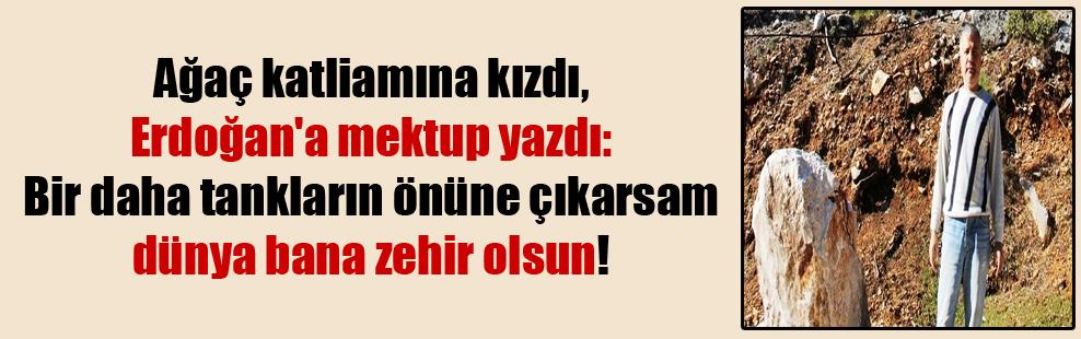 Ağaç katliamına kızdı, Erdoğan'a mektup yazdı: Bir daha tankların önüne çıkarsam dünya bana zehir olsun!