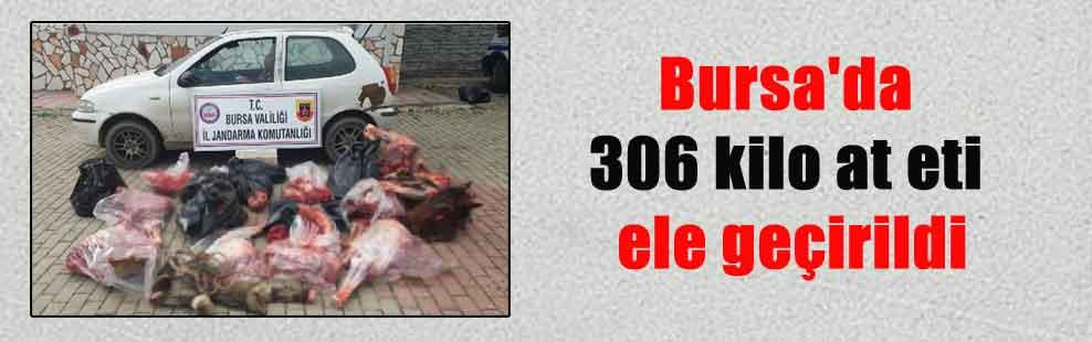 Bursa'da 306 kilo at eti ele geçirildi
