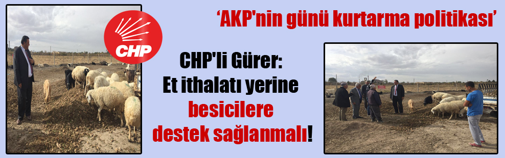 CHP'li Gürer: Et ithalatı yerine besicilere destek sağlanmalı!