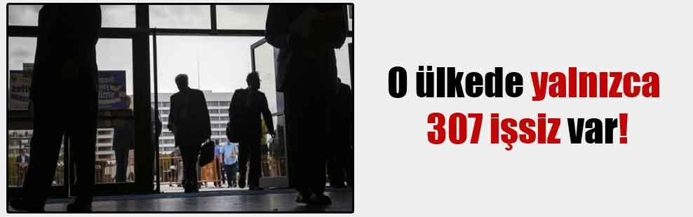 O ülkede yalnızca 307 işsiz var!