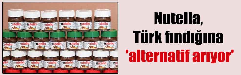 Nutella, Türk fındığına 'alternatif arıyor'