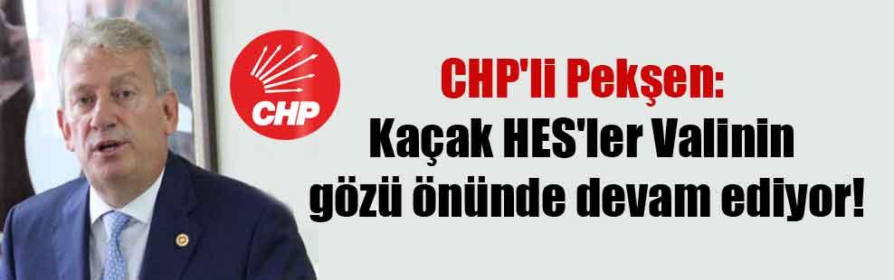 CHP'li Pekşen: Kaçak HES'ler Valinin gözü önünde devam ediyor!
