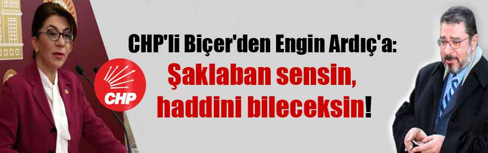 CHP'li Biçer'den Engin Ardıç'a: Şaklaban sensin, haddini bileceksin!