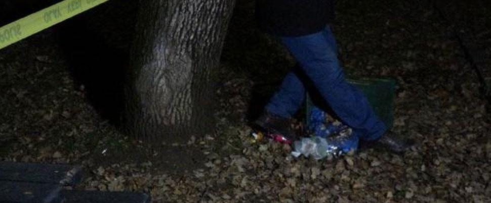 Parkta ağaca asılı cesedi bulundu