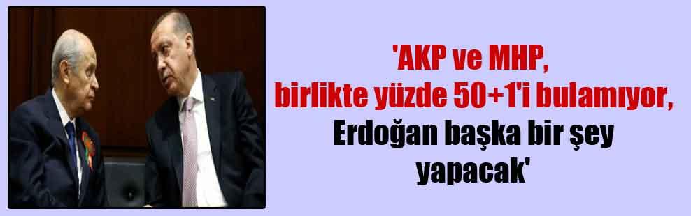 'AKP ve MHP, birlikte yüzde 50+1'i bulamıyor, Erdoğan başka bir şey yapacak'