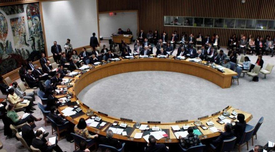BM Güvenlik Konseyi'nin yeni geçici üyeleri belirlendi